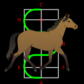 Dressage Lite icon