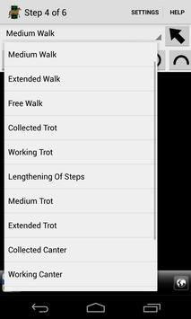 Dressage Lite screenshot 3