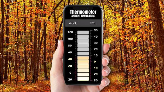 Precise thermometer for free screenshot 2