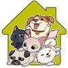 ikon Pet House 2