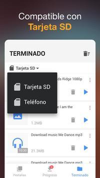 Descargador de vídeos captura de pantalla 2