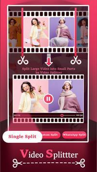 Video Splitter الملصق
