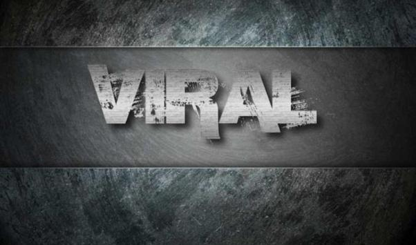 More free viral videos. poster