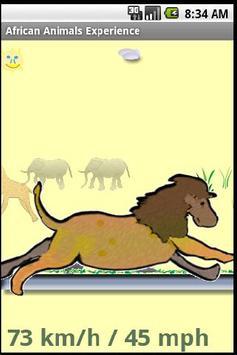 Animals Speedometer Experience poster