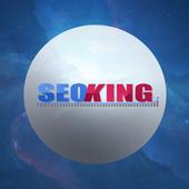Seoking - Consulente Seo icon