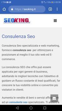 Seoking - Consulente Seo screenshot 8