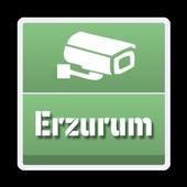 Erzurum Şehir Kameraları icon