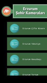 Erzurum Şehir Kameraları screenshot 1