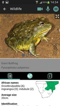 Sasol Wildlife for Beginners screenshot 4